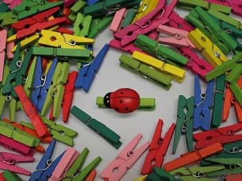 Dekorační kolíčky barevné, bal. 10ks