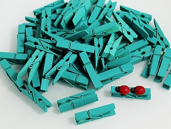 Dekorační kolíčky MINTOVÉ na jmenovky a k dekoraci, bal. 10ks